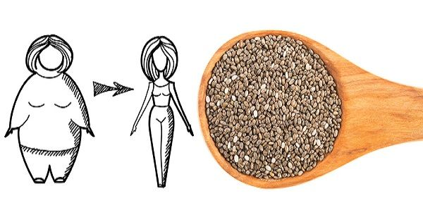 chia-seeds-weight-loss.jpg (38 KB)